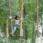 Bali_treetopblack_Circuit_2.jpg