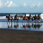 horsergangga.jpg