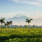 Villa Bali Semarapura- ref VBHM033 – 2