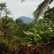 Villa Bali Villa Bayad- ref VIBY001 – 11