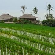 Villa Bali Villa Bulung Daya- ref VIBD001 – 6