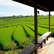 Villa Bali Villa Bulung Daya- ref VIBD001 – 13