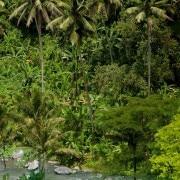 Villa Bali Villa hartland ubud- ref VIHRT001 – 6
