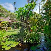 Villa Bali Villa Hibiscus- ref VIHI001 – 36
