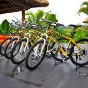 Villa Bali Villa Lotus Ubud- ref VILO001 – 12