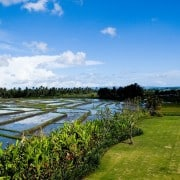 Villa Bali Villa Mandalay Seseh- ref VIMY004 – 4