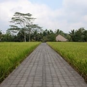 Villa Bali villa samaki- ref VISK003 – 2