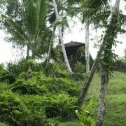 Villa Bali villa samaki- ref VISK003 – 3
