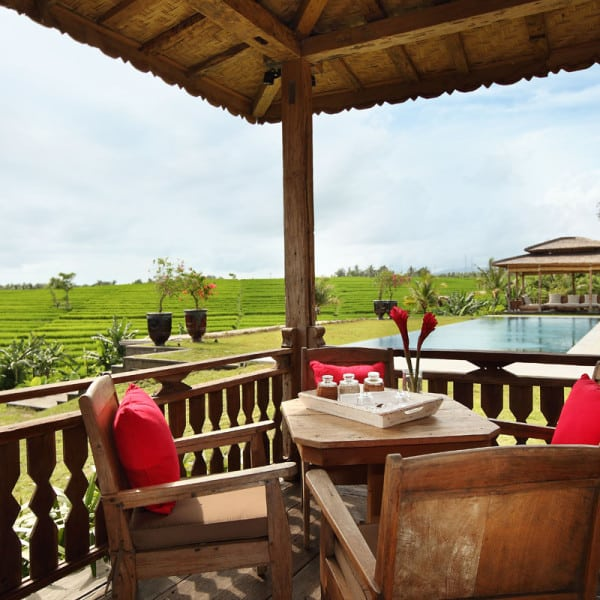 Terrasse et rizières