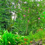Villa Bali Vajra- ref VBHM036 – 14