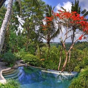 Ubud Bali 8 -10 personnes